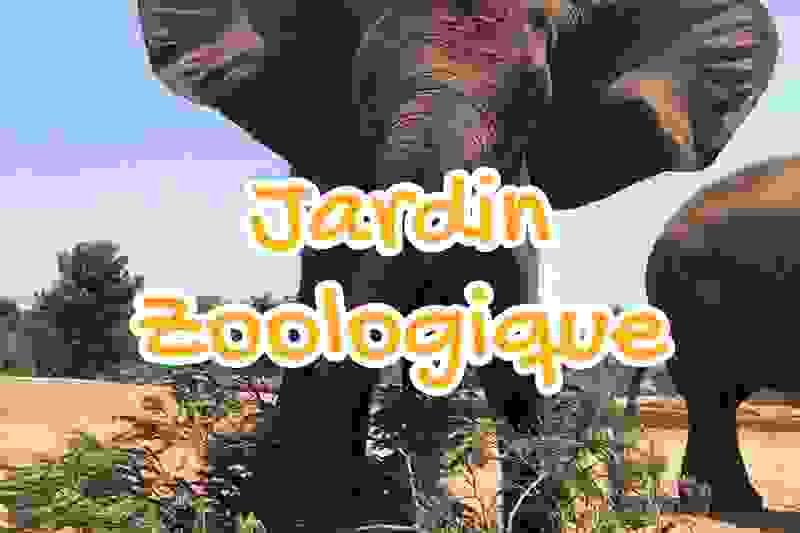 jardin, zoologique, temara, rabat, maroc