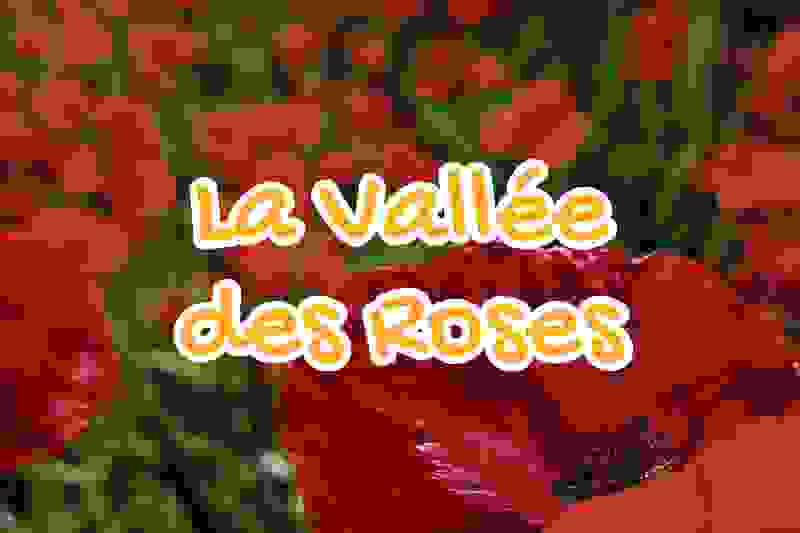 the, valley, of, the, roses, tata, morocco