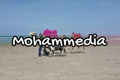 Mohammédia