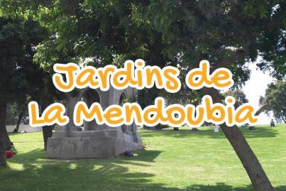 le, jardin, de, la, mendoubia, tanger, maroc