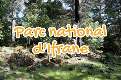 parc, national, ifrane, maroc
