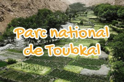 toubkal, national, park, marrakesh, morocco