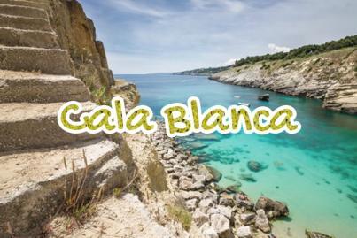 Playa Cara Blanca